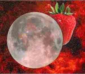 strawberry moon 2